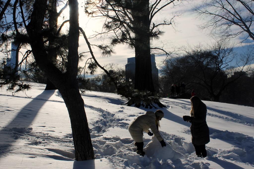 сочинение на тему описание природы зимой